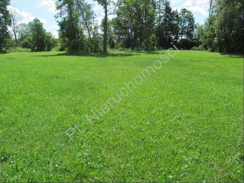 Działka rolna na sprzedaż Szymankowszczyzna  16600m2 Foto 5