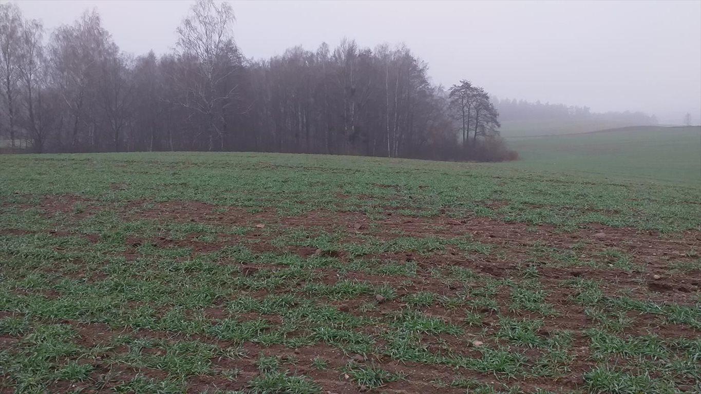 Działka gospodarstwo rolne na sprzedaż Wyszki  7000000m2 Foto 10