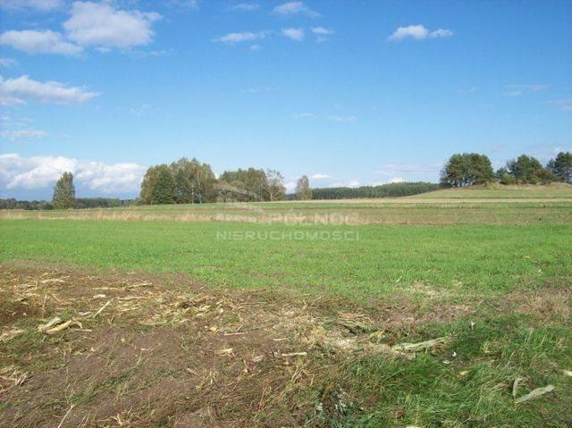 Działka rolna na sprzedaż Janowicze  3001m2 Foto 2