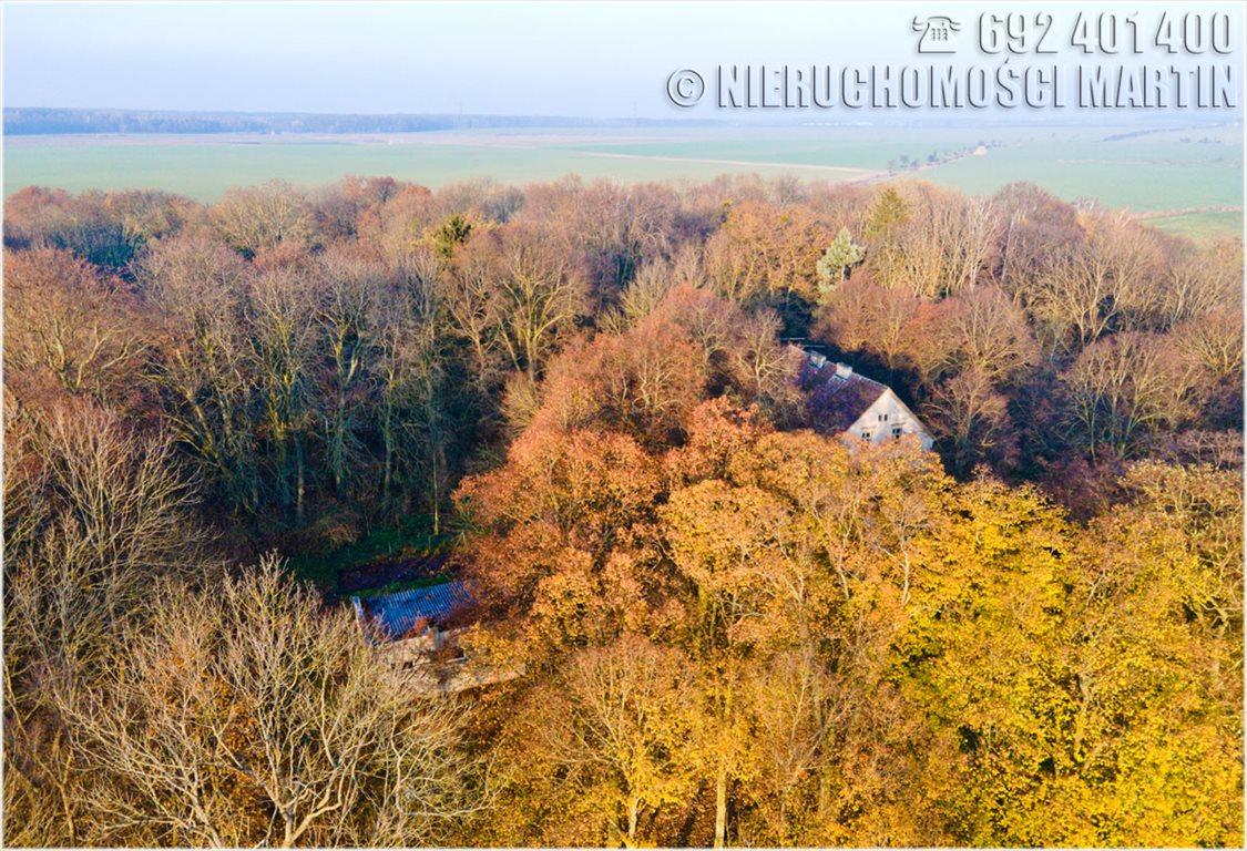 Dom na sprzedaż Chlewiska  420m2 Foto 9