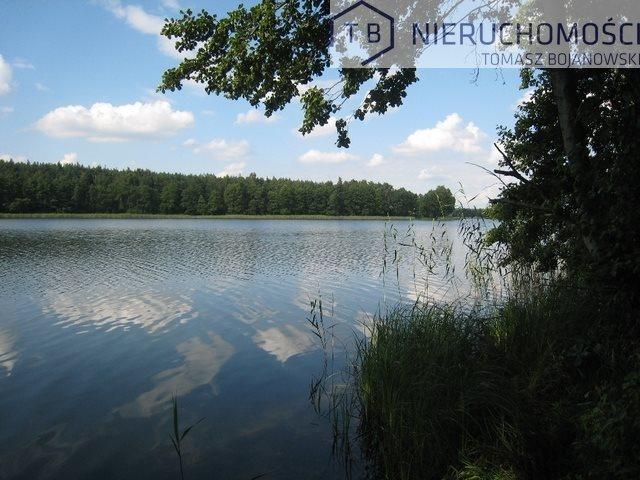 Działka budowlana na sprzedaż Powidz, Nad Jeziorem, Przybrodzin  3000m2 Foto 1