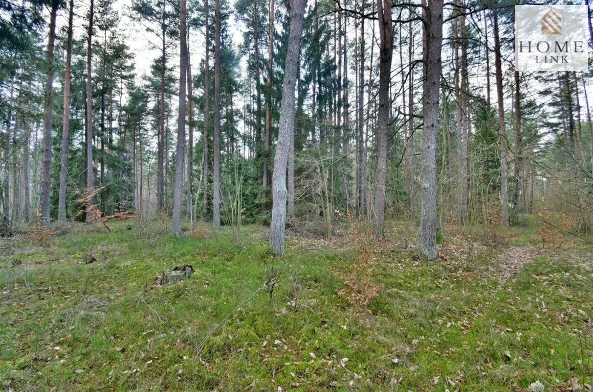 Działka leśna na sprzedaż Warkały  47800m2 Foto 6