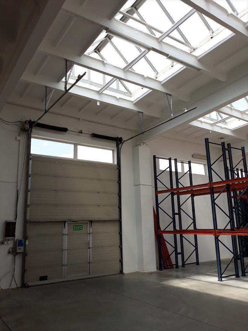 Lokal użytkowy na wynajem CHŁODNIA - 1200 m2 - rzeszów  1200m2 Foto 10