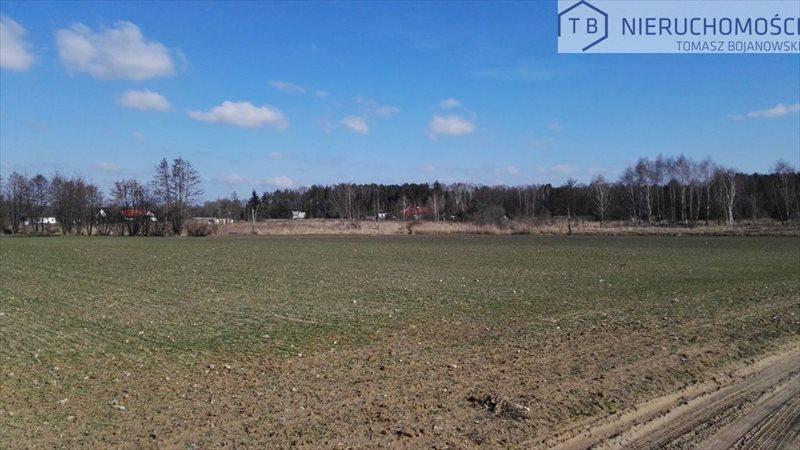 Działka budowlana na sprzedaż Cerekwica, Działka Usługowa Rokietnica okolice  2500m2 Foto 2