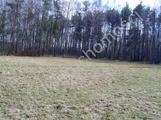 Działka rolna na sprzedaż Mszczonów  4300m2 Foto 2