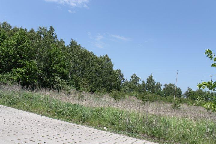 Działka rolna na sprzedaż Łódź, Widzew, Stare Moskule, Opolska  14997m2 Foto 3