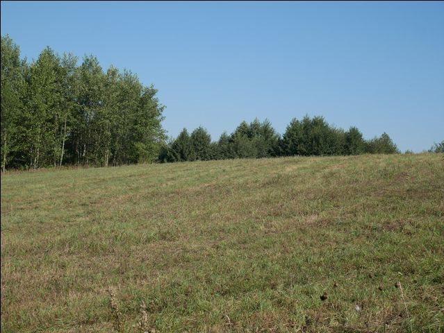 Działka rolna na sprzedaż Skolity  97248m2 Foto 6