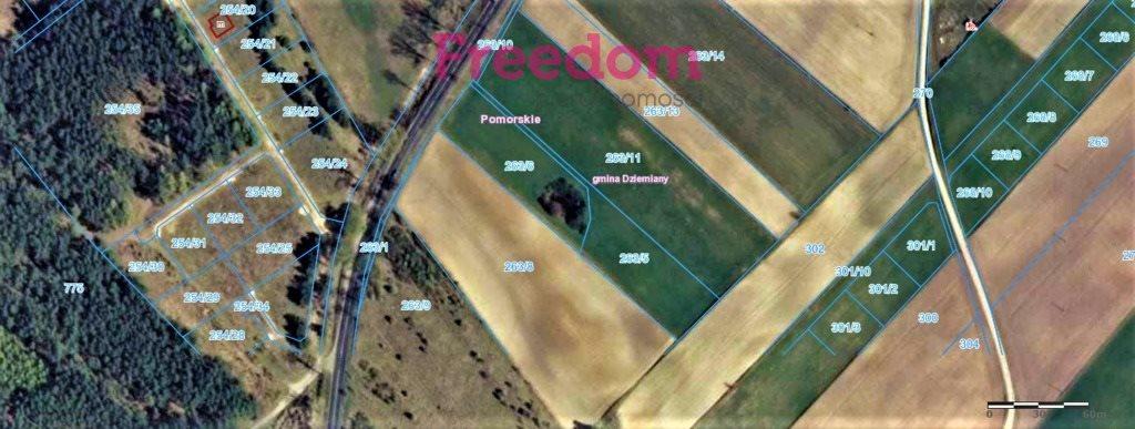 Działka siedliskowa na sprzedaż Dziemiany  3500m2 Foto 1
