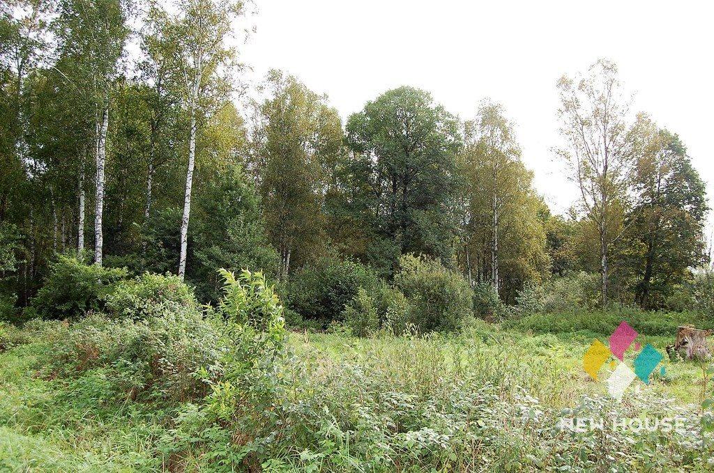 Działka rolna na sprzedaż Przykop  5100m2 Foto 2