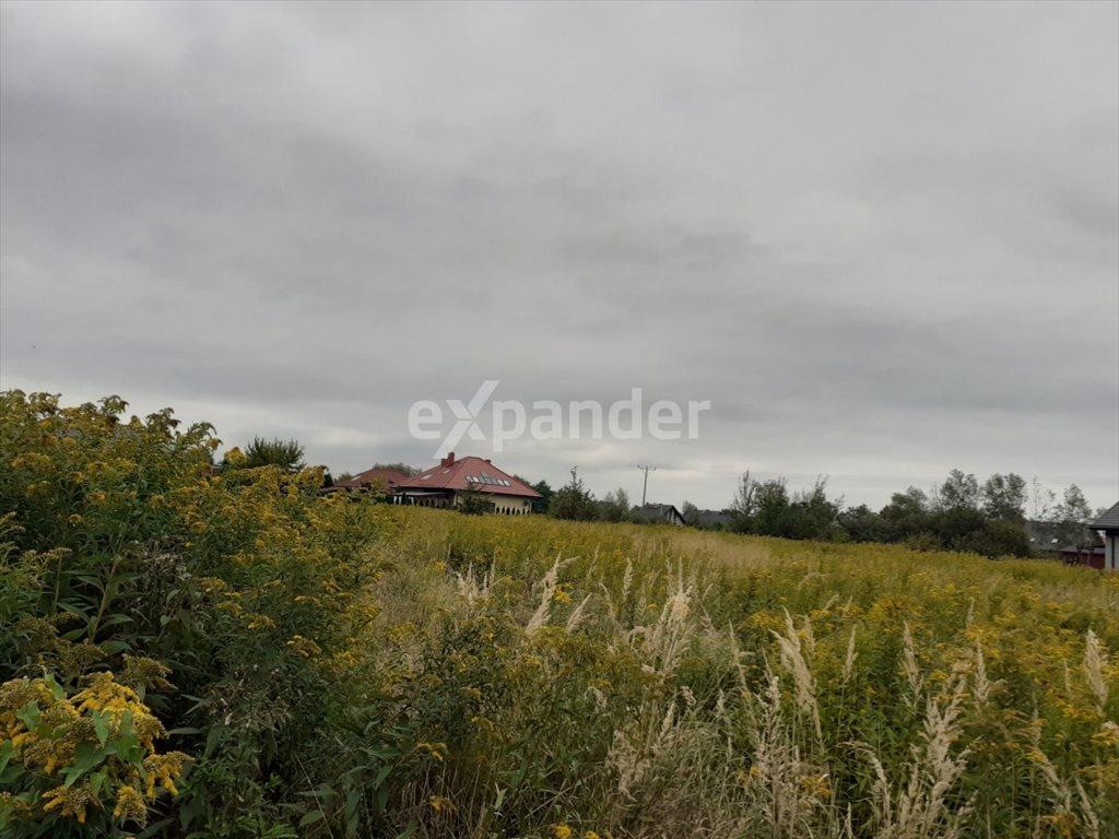 Działka budowlana na sprzedaż Wilkszyn  1378m2 Foto 2