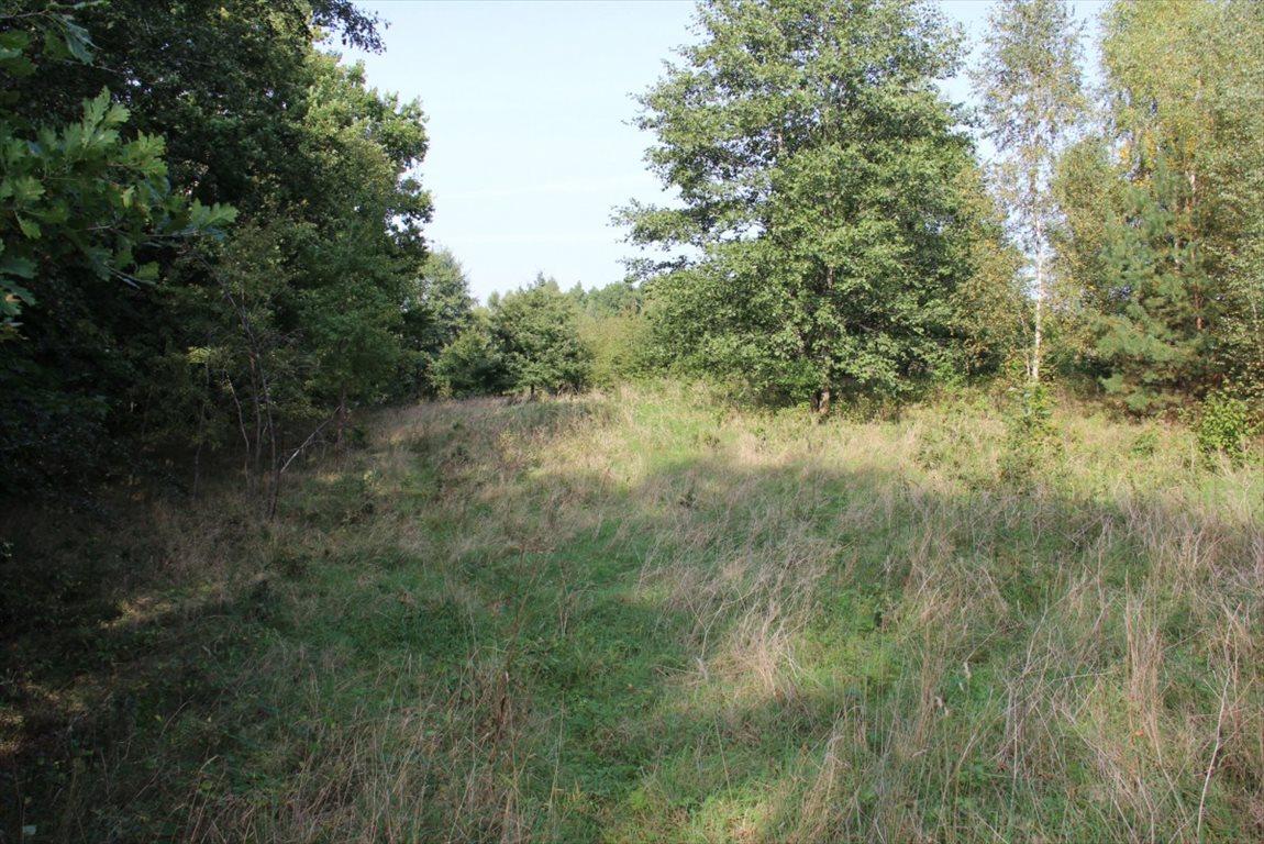 Działka rolna na sprzedaż Salinko  17808m2 Foto 10
