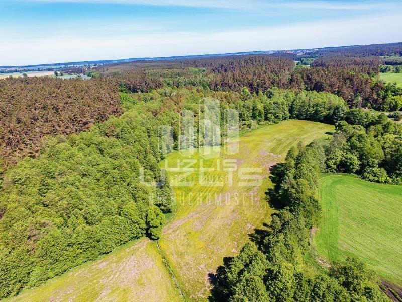 Działka rolna na sprzedaż Czarnocin  5900m2 Foto 6