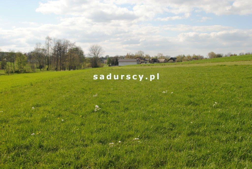 Działka rolna na sprzedaż Ściborzyce  34334m2 Foto 3