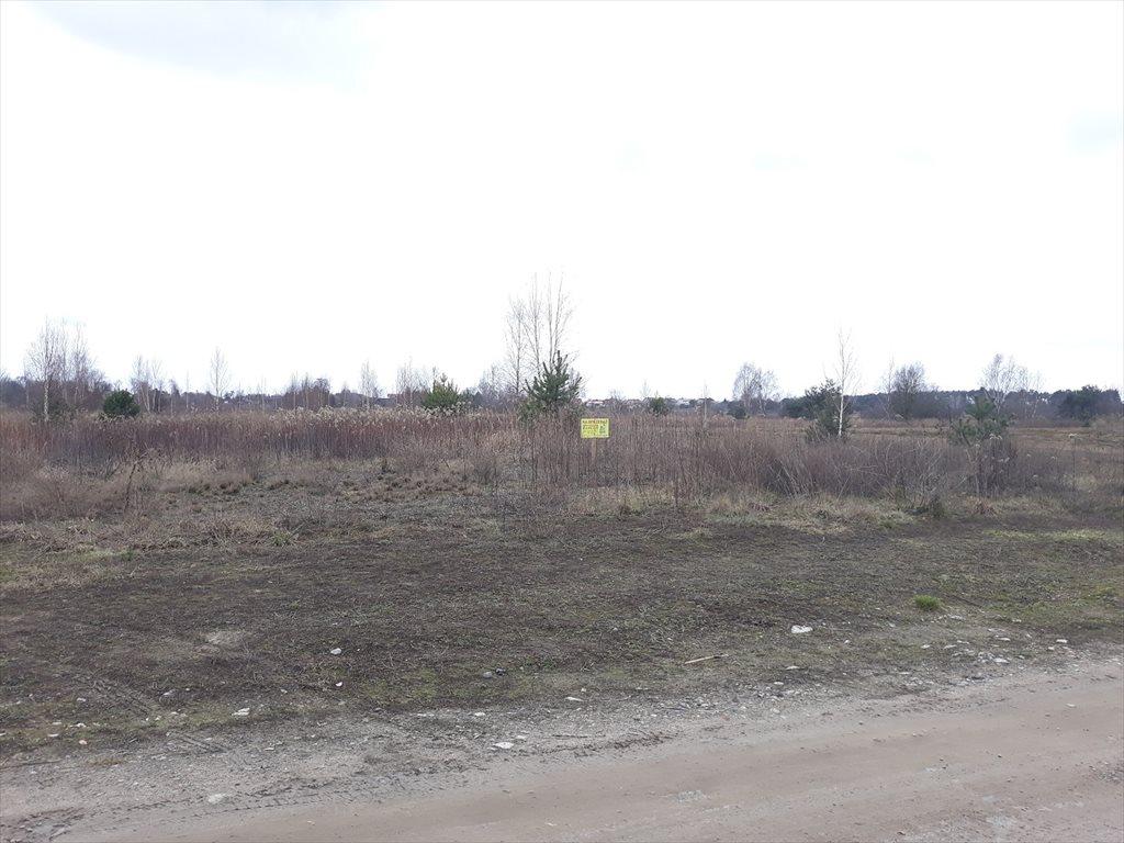 Działka budowlana na sprzedaż Stare Babice, Borzęcin Duży  4500m2 Foto 6
