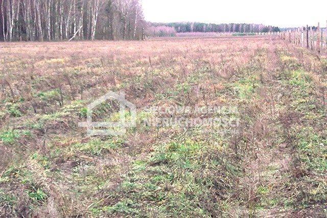 Działka leśna na sprzedaż Strzeczona  129577m2 Foto 4