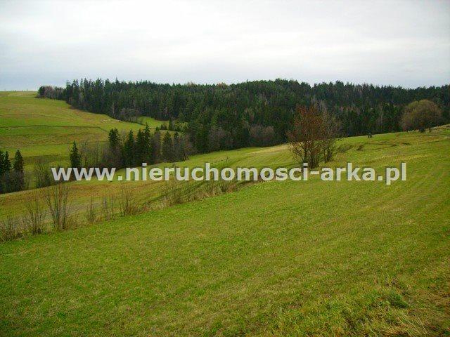 Działka rolna na sprzedaż Rabka-Zdrój  1000m2 Foto 1