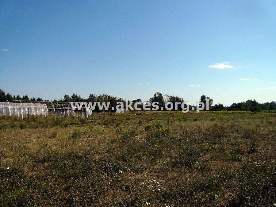 Działka budowlana na sprzedaż Domaniewek  1500m2 Foto 4