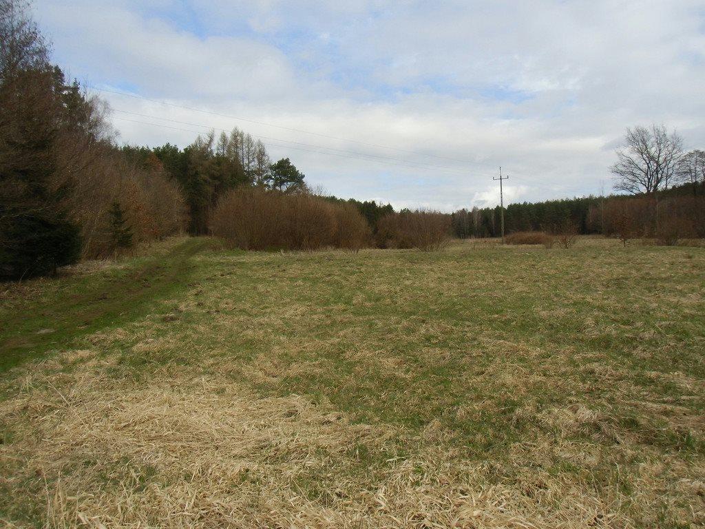 Działka rolna na sprzedaż Tawęcino  136800m2 Foto 10