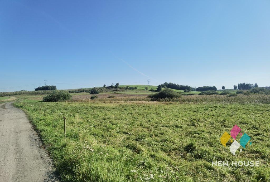 Działka rolna na sprzedaż Gołogóra  3109m2 Foto 5