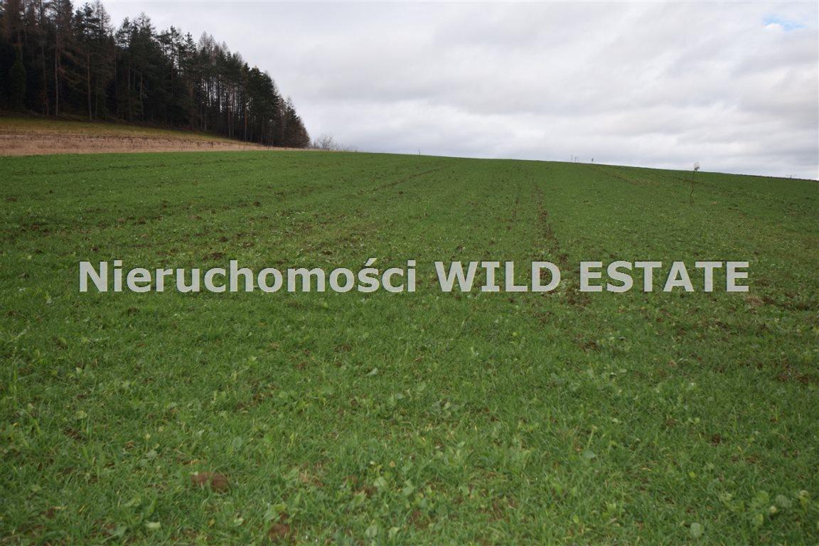 Działka rolna na sprzedaż Solina, Berezka  9520m2 Foto 8
