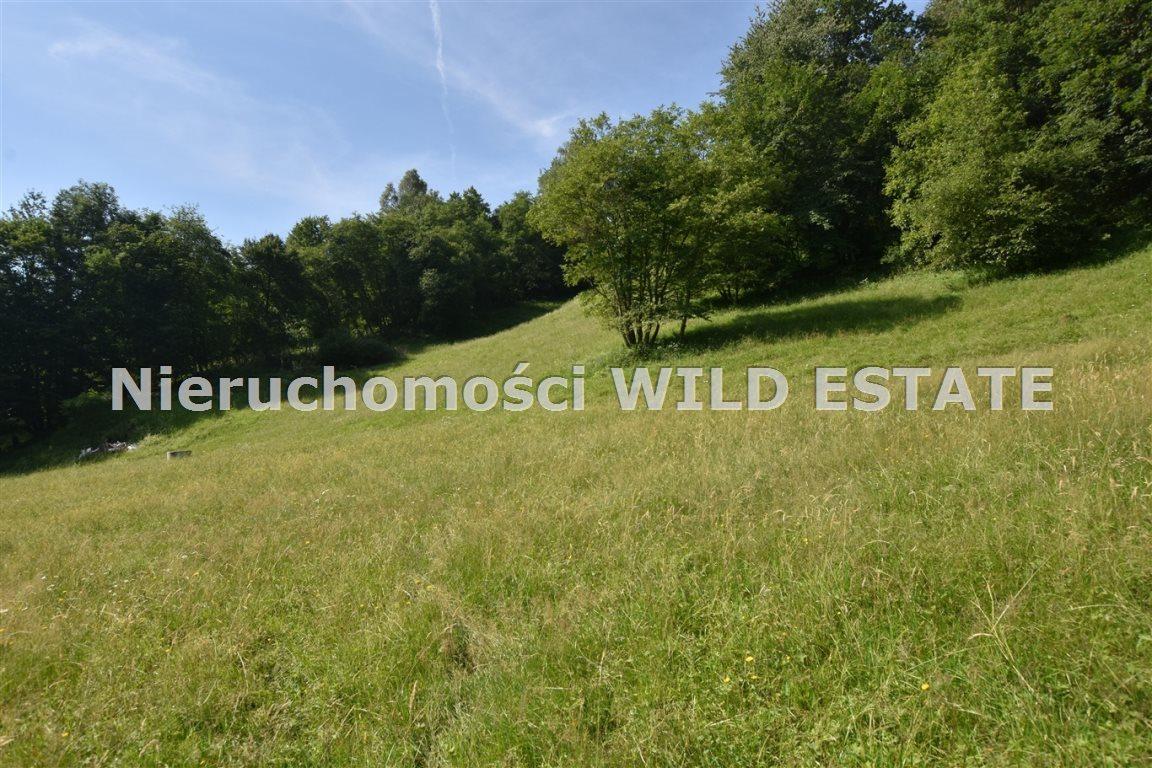 Działka rolna na sprzedaż Lesko, Łączki  4297m2 Foto 2