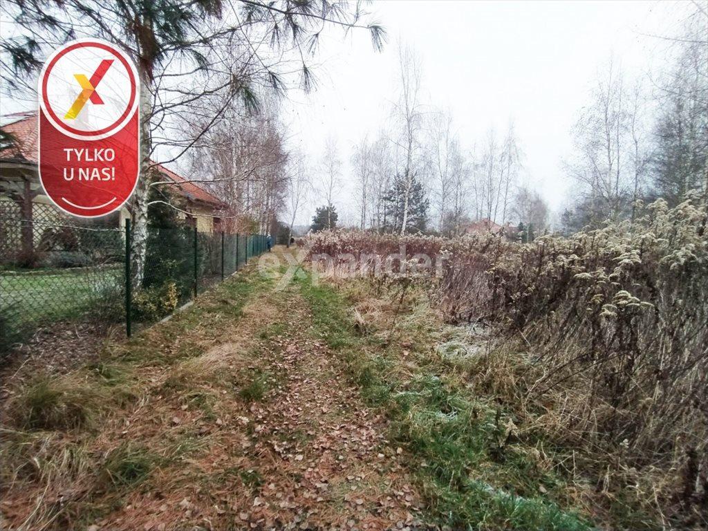 Działka budowlana na sprzedaż Miłoszyce, Bukowa  3041m2 Foto 4