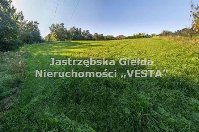 Działka inna na sprzedaż Jastrzębie-Zdrój  2466m2 Foto 1