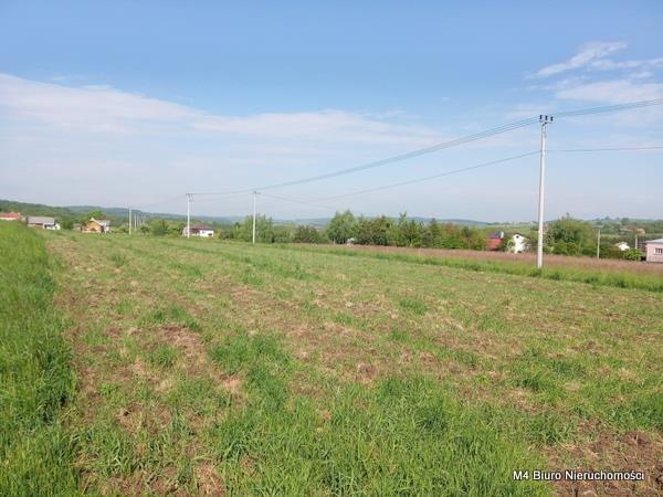 Działka rolna na sprzedaż Żeglce  15500m2 Foto 7