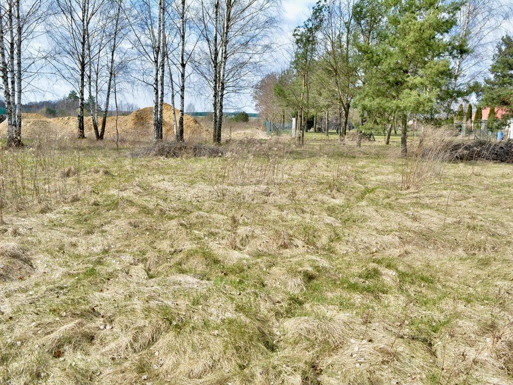 Działka rolna na sprzedaż Ryczołek  5242m2 Foto 5