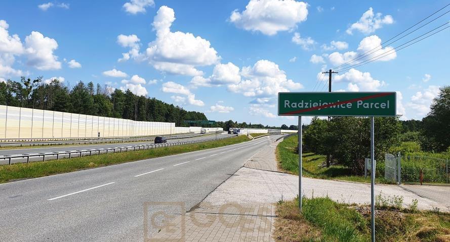 Działka budowlana na sprzedaż Radziejowice-Parcel  3000m2 Foto 5