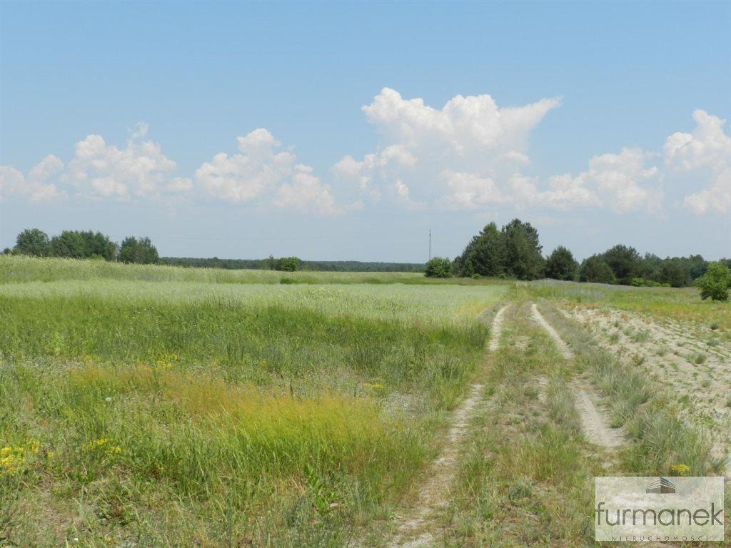 Działka rolna na sprzedaż Gózd Lipiński  11400m2 Foto 4