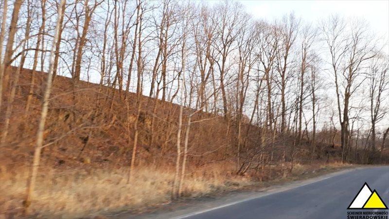 Działka leśna na sprzedaż Kościelniki Górne, Pogórze Izerskie  4800m2 Foto 2