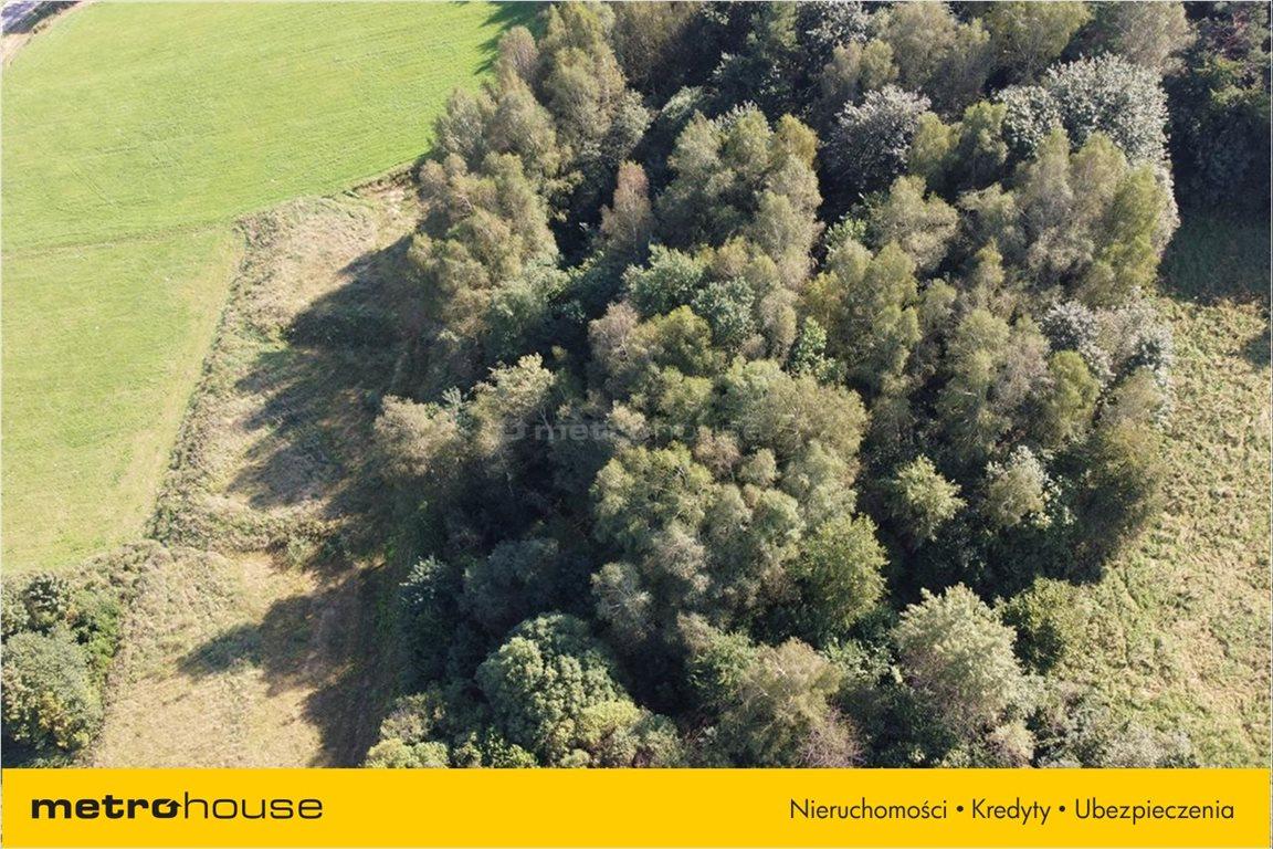 Działka rolna na sprzedaż Bukowiec, Solina  13100m2 Foto 8