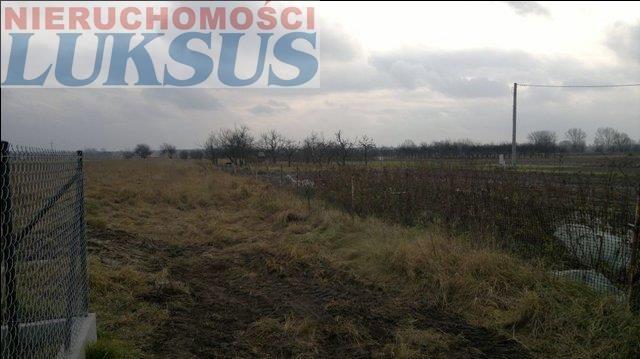 Działka rolna na sprzedaż Kędzierówka  15800m2 Foto 2