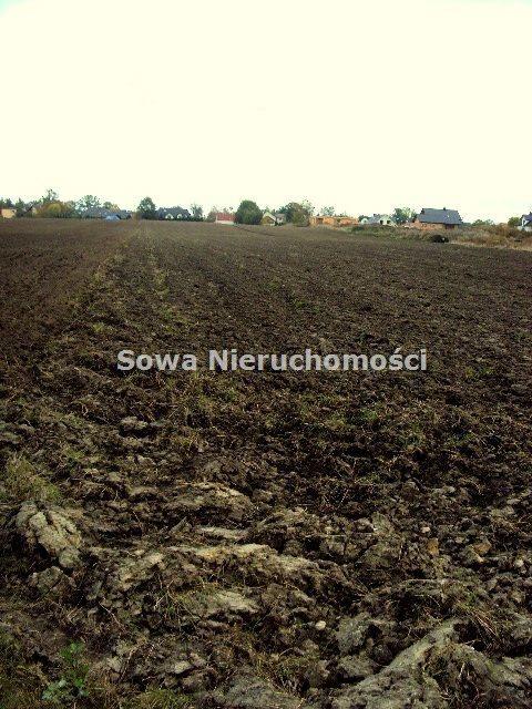 Działka inwestycyjna na sprzedaż Wrocław  20000m2 Foto 3