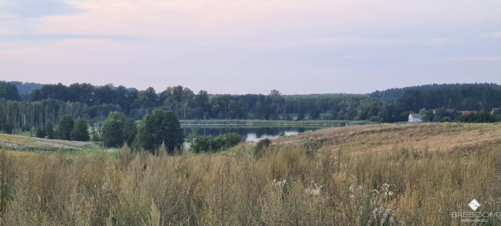 Działka rolna na sprzedaż Cerkiewnik  3231m2 Foto 6