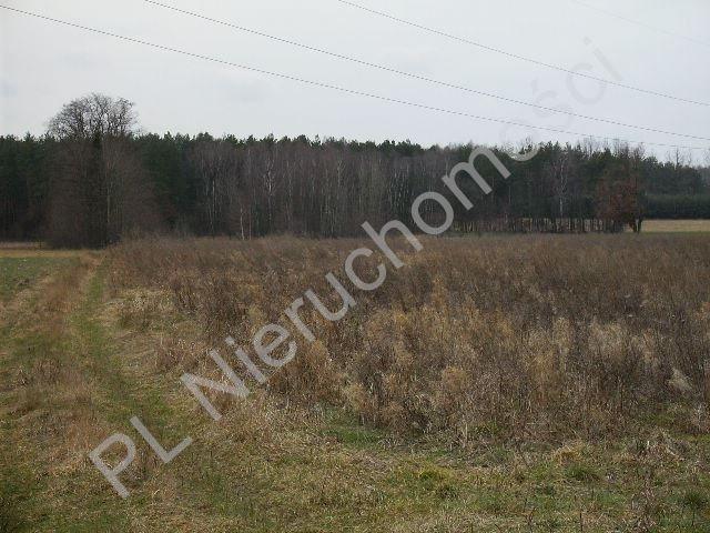 Działka rolna na sprzedaż Mszczonów  28100m2 Foto 2