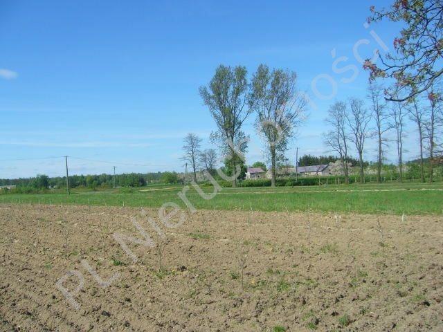 Działka rolna na sprzedaż Osuchów  9475m2 Foto 1