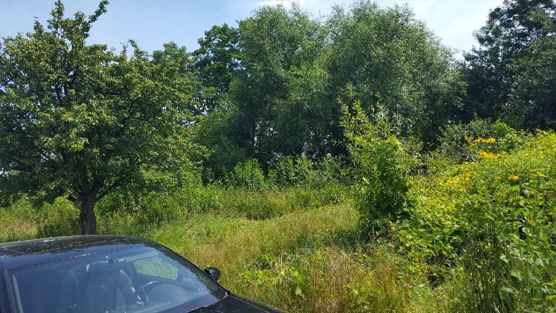 Działka siedliskowa na sprzedaż Hucisko  5600m2 Foto 5