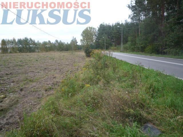 Działka komercyjna na sprzedaż Piaseczno, Henryków-Urocze  12160m2 Foto 2