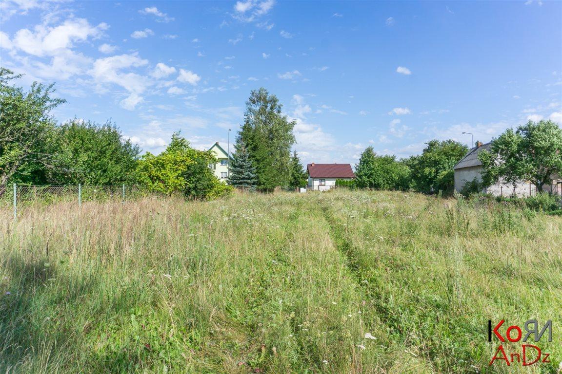 Działka budowlana na sprzedaż Okszów, Chełmska  3000m2 Foto 6