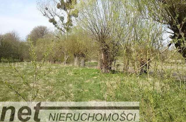Działka inna na sprzedaż Juszkowo, Rzeka, Raduńska  7771m2 Foto 2