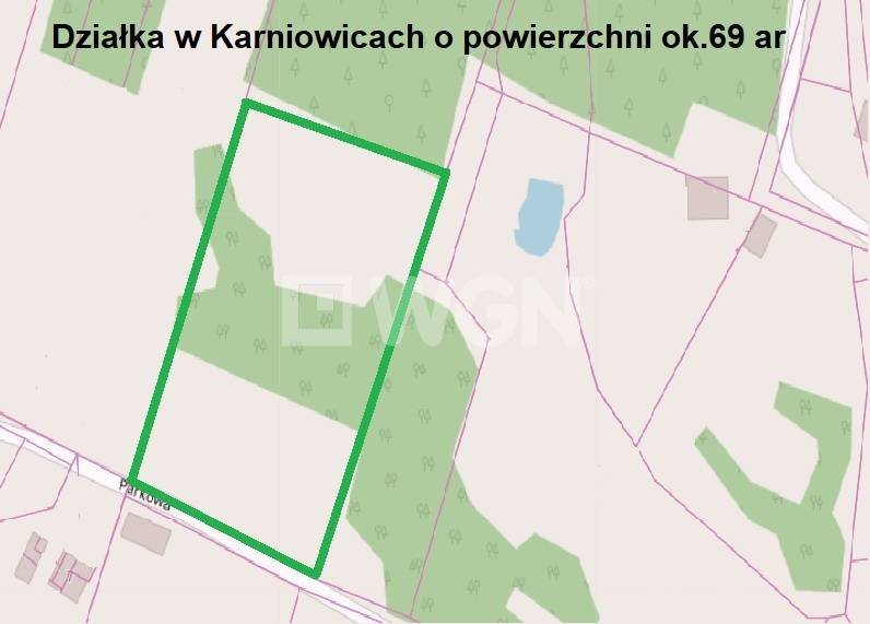 Działka inna na sprzedaż Karniowice, Parkowa  6935m2 Foto 6
