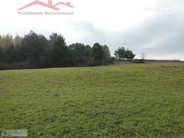 Działka rolna na sprzedaż Dukla  125100m2 Foto 4