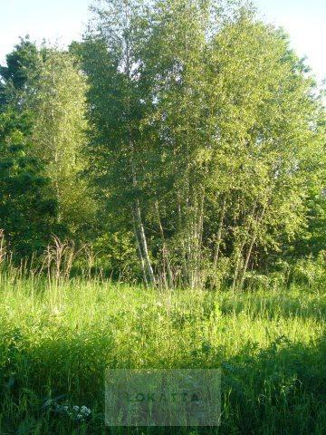 Działka budowlana na sprzedaż Klarysew, PRAWDZIWKA MUCHOMORA  1651m2 Foto 1