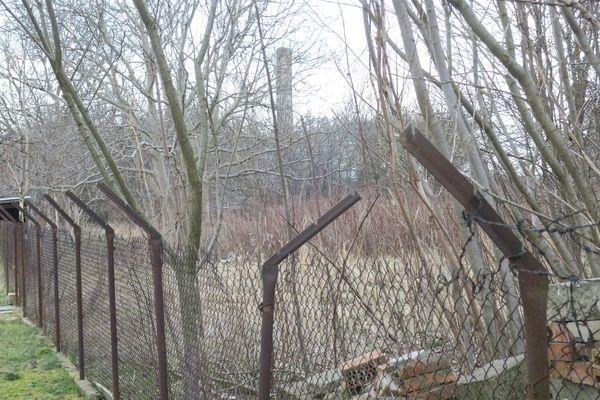 Działka rolna na sprzedaż Radom, Halinów, Garbarska  5413m2 Foto 7