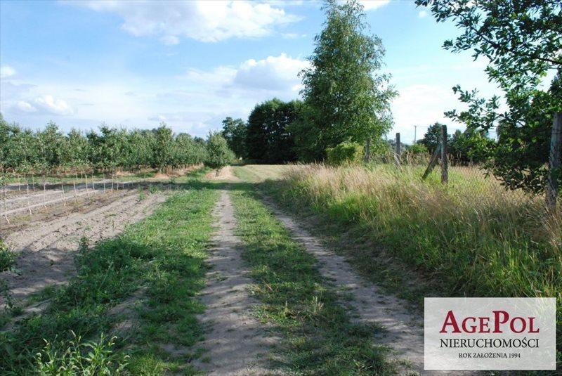 Działka rolna na sprzedaż Kobylin  2000m2 Foto 10