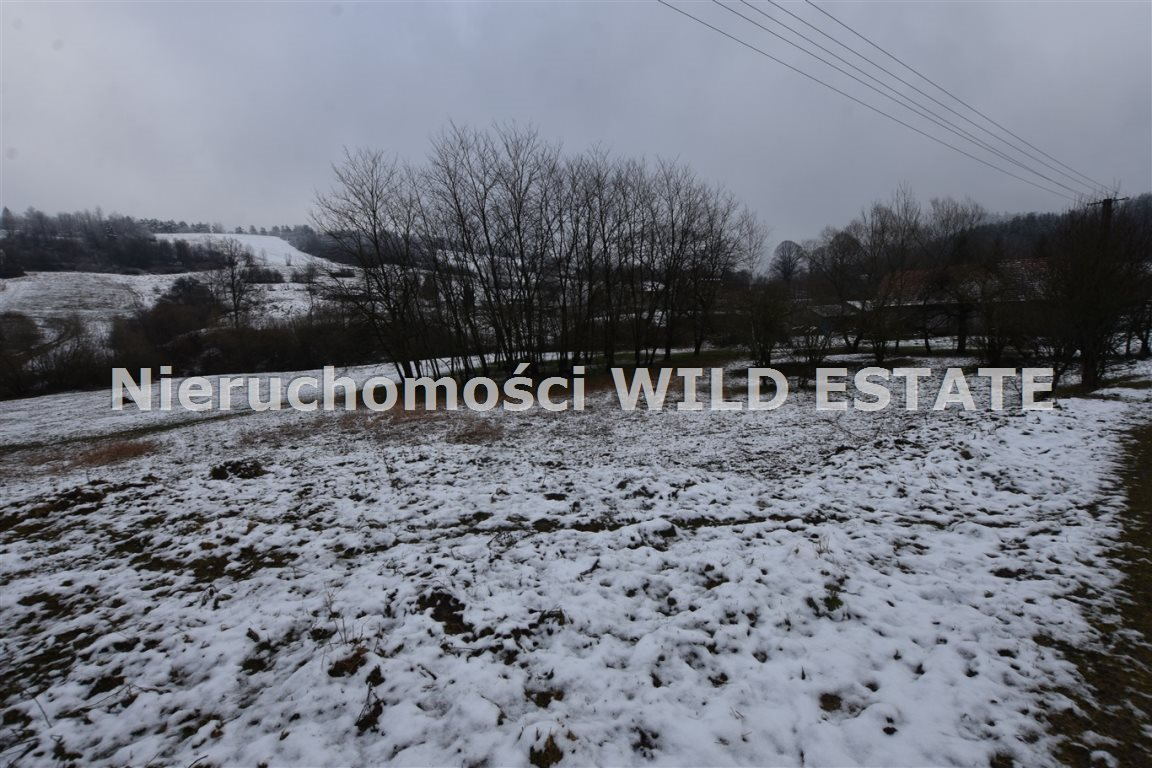 Działka rolna na sprzedaż Paszowa  4002m2 Foto 3