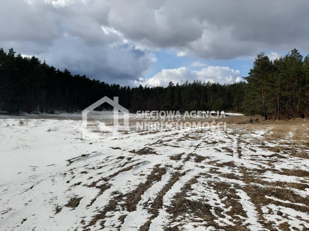 Działka rolna na sprzedaż Zielenin  43779m2 Foto 5