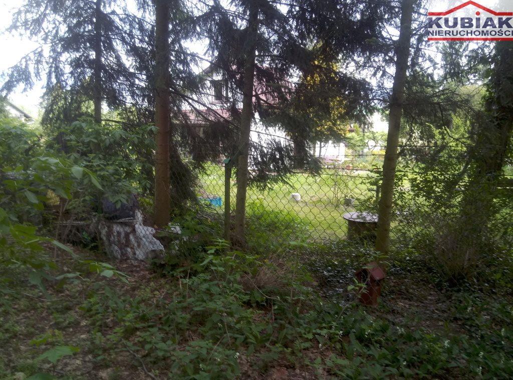Działka leśna na sprzedaż Powązki  3600m2 Foto 4